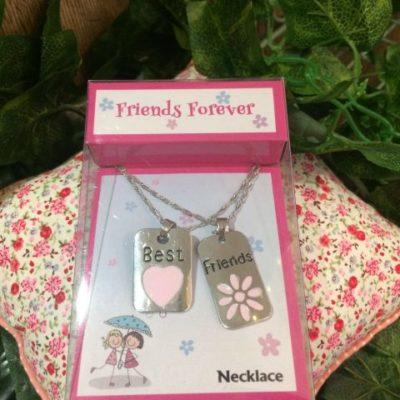 Best Friends Necklace Set Double Tags
