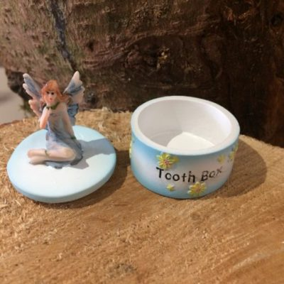 Tooth Fairy Box Blue