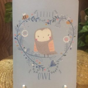 Woodland Notebook Owl