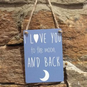 I Love You To The Moon Mini Hanger