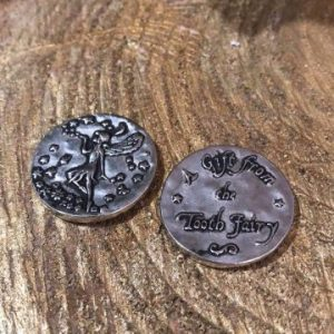 Fairy Wishing Coin Tooth Fairy Silver Highlight