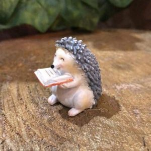 Miniature Hedgehog With Book
