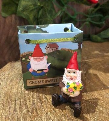 Gnome In A Bag