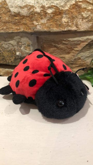 Ladybird Plush Soft Toy