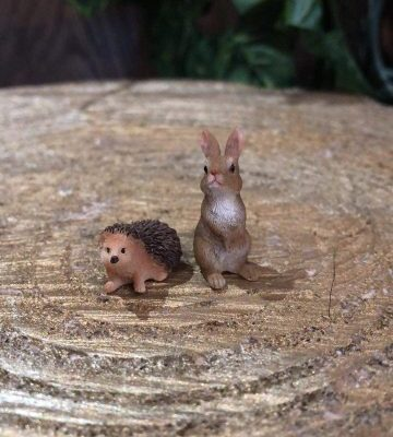 Miniature Hedgehog and Bunny Rabbit Set
